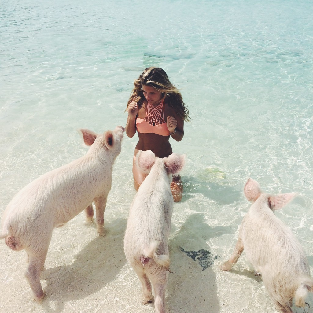 11 Little Known Swimming Spots In Colorado That Will Make: Pigs In Paradise « Violablu ♥ My Photo & Music Blog